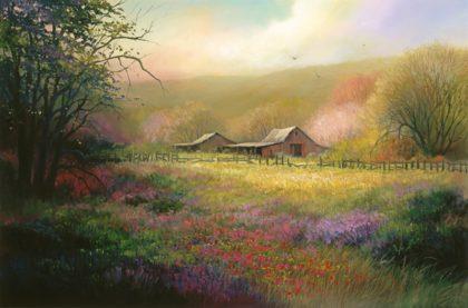 Santa Cruz Meadow
